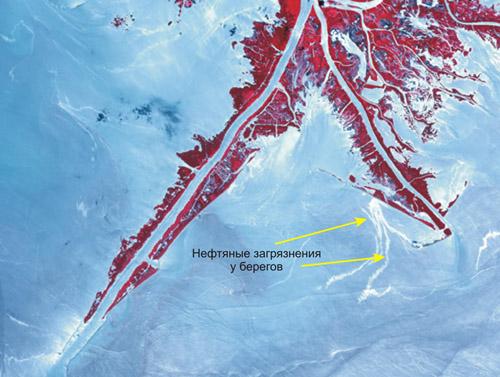 Космическое  изображение, полученное 10 июня 2010 года со спутника TERRA (аппаратура ASTER)